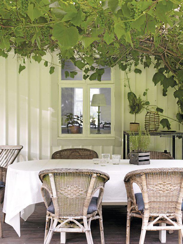 terrasse blanche et verdure