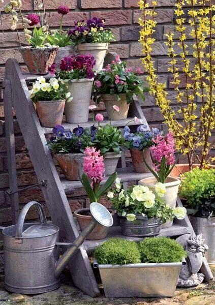 escabeau de fleurs